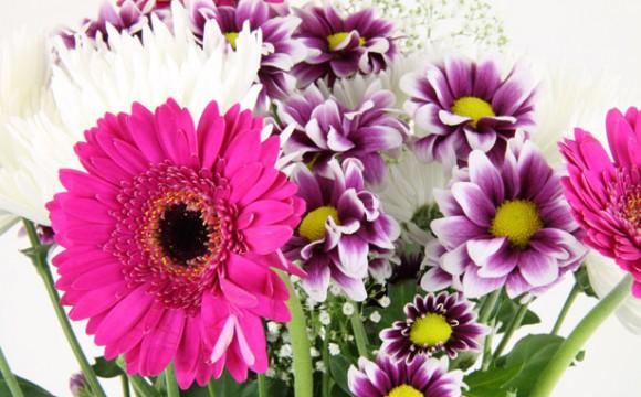 Blumengrüße über das Internet